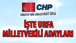 CHP Şanlıurfa Milletvekili Aday Listesi Belli Oldu