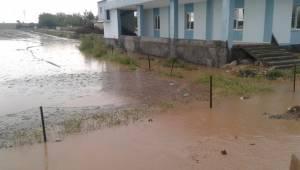 Hilvan ve Ceylanpınar'da Tarım Arazilerini Su Bastı