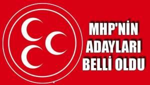 MHP Şanlıurfa Milletvekili Aday Listesi Belli Oldu