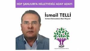 Telli, HDP Her Kesimi Kucaklayacak