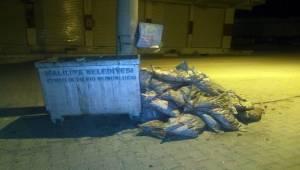 Devletin Verdiği Onlarca Kömürü Çöpe Attılar