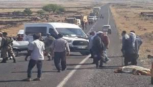 Viranşehir'de Feci Kaza, 3 Ölü 2 Yaralı