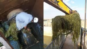 Çiftçiler Sulama Borularını Temizledi