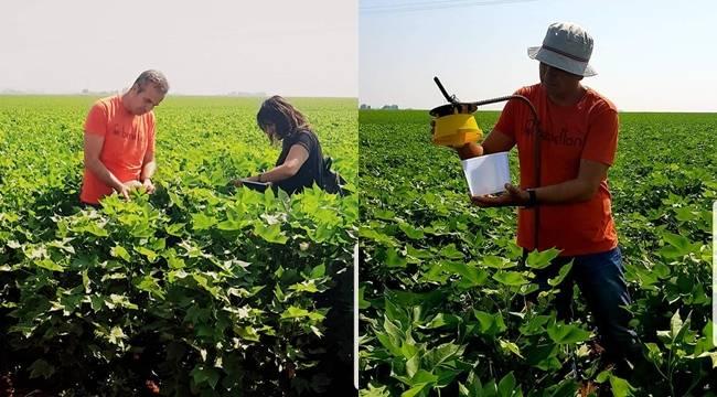 Çiftçilere Dikenli ve Yeşil Kurt ile İlgili Bilgi Verdiler