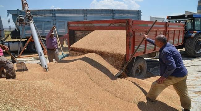Şanlıurfa'ya Buğdaylar Geliyor