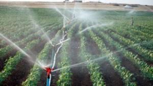 Dicle Elektrik Çiftçiler ile İlgili Kararını Verdi