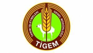 TİGEM'de Köklü Değişiklikler Yapıldı