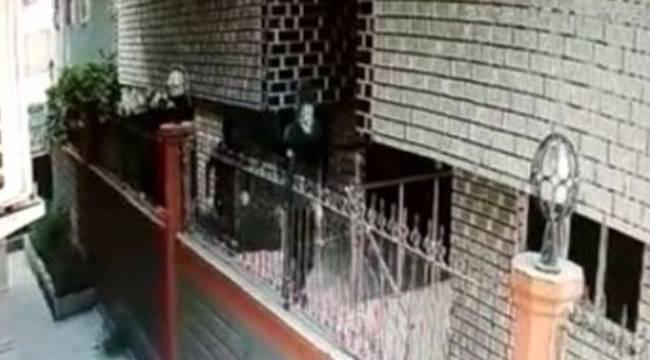 Viranşehir'deki 2 Gapsçı DNA Testi ile Yakalandı