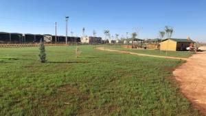 Viranşehir Devasa Bir Park Daha Yapılıyor