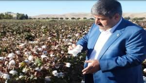 Başkan Eyyüpoğlu'ndan Pamuk Fiyatı Açıklaması