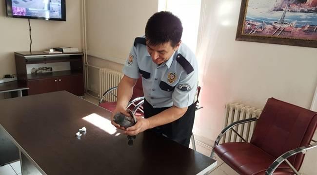 Duyarlı Polisin Davranışı Takdir Topladı