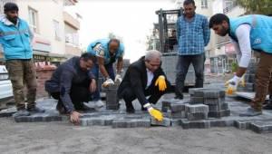 Demirkol Yenişehir Mahallesini İnceledi