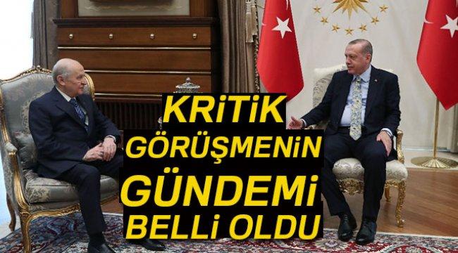 Erdoğan-Bahçeli Görüşmesinin Gündemi Belli Oldu
