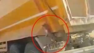 Hafriyat kamyonunda davetsiz misafir