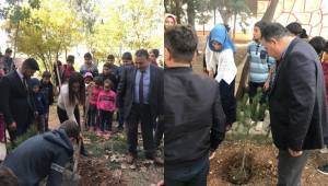 Ulubağ Okulunda Hatıra Ormanı Etkinliği Yapıldı