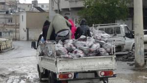 Urfa'da Kömür Dağıtımına Başlandı