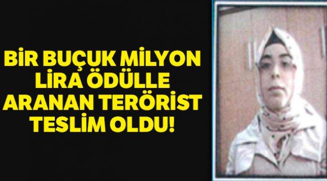 Bir buçuk milyon lira ödülle aranan terörist teslim oldu!