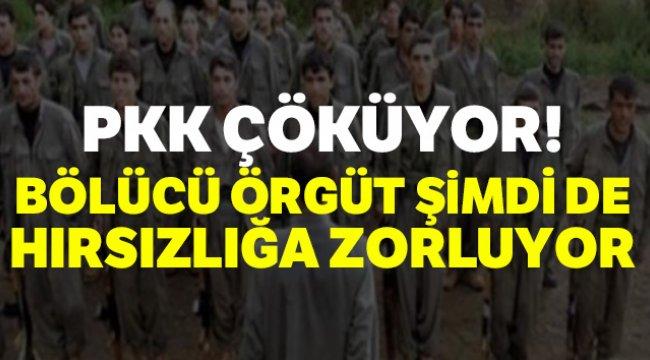 PKK Çöküyor Şimdi de Hırsızlığa Zorluyorlar