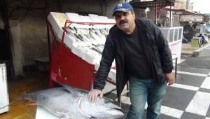 Şanlıurfa'da balık satıcılarının yüzü gülüyor