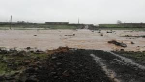 Siverek'te Yağış Hayatı Olumsuz Etkiledi