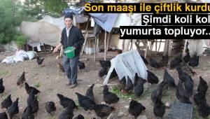 Son maaşı ile çiftlik kurdu koli koli yumurta topluyor