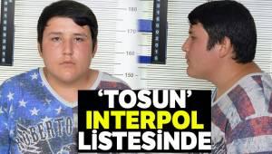 Çiftlikbank dolandırıcısı Tosun Interpol listesinde