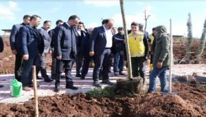 Başkan Çiftçi Siverek Vadi Parkı İnceledi