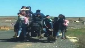 Traktör Turizm Seyahat Trafiğe Takıldı