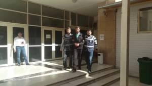 Şanlıurfa'da 12 aranan şahıs yakalandı