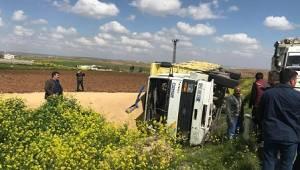 Şanlıurfa'da arpa yüklü kamyon devrildi