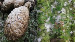 Siverek'te Yağış Yerini Doluya Bıraktı