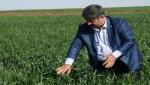 Başkan Eyyüpoğlu'ndan Çiftçilere Uyarı