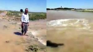 Suruç'ta Tarlalar Sular Altında Kaldı