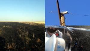 Kıvılcım Buğday Tarlasını Kül Etti