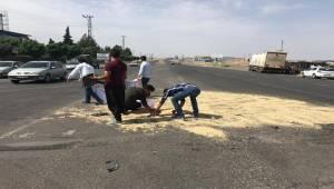 Meydana Gelen Kazada Arpalar Yola Saçıldı