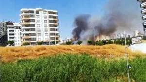 Şanlıurfa'da anız yangını korkuttu
