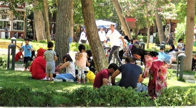 Sıcaklık Rekorunu Şanlıurfa'da Kırıldı