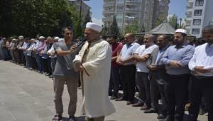 Siverek'te Mursi için gıyabi cenaze namazı kılındı