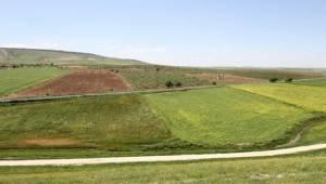 Urfa ve Mardin'de Toplulaştırma Çalışmaları Devam Ediyor
