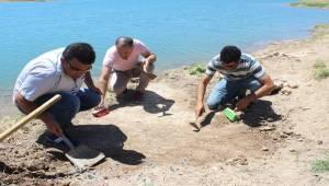 Atatürk Barajında Mozaik Ortaya Çıktı
