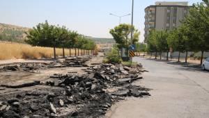 Urfa'da Standart Cadde Uygulaması Başladı