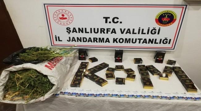 19 Kilo Esrar Yakalandı 2 Kişi Tutuklandı