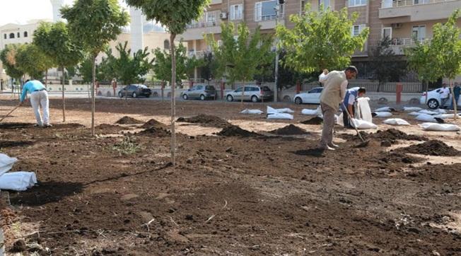 Haliliye'de Parkların Çehresi Değişiyor