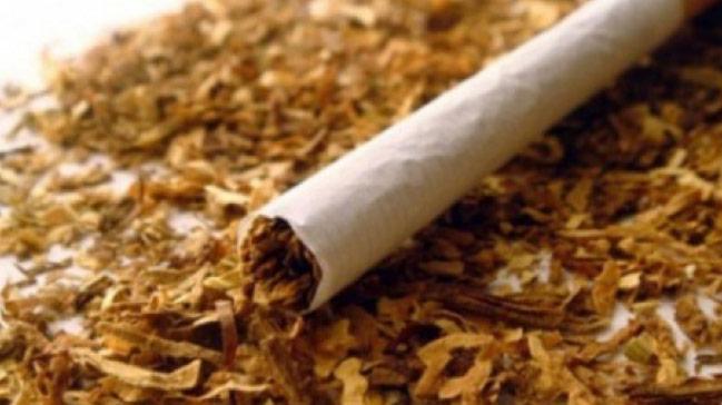 Şanlıurfa Dahil 8 İlde Tütün Kaçakçılarına Operasyon