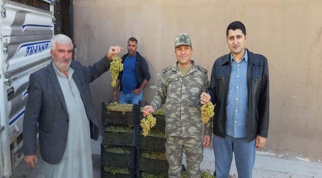 Akçakale'de Mehmetçiğe 10 Ton Meyve İkramı