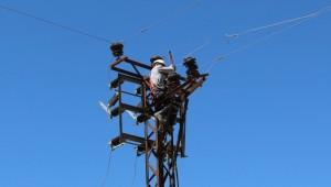 Dicle Elektrik Çiftçileri Uyardı