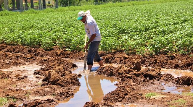 Uyarıyı dikkate almayan çiftçi destekleme alamayacak