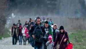 İşte Güncel Şanlıurfa'daki Suriyeli Sayısı