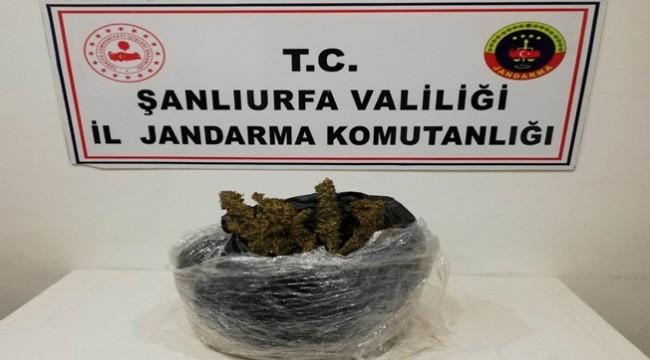 Viranşehir'de 10 Kilo Esrar Ele Geçirildi