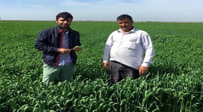 Özyavuz Çiftçilere Ücretsiz Danışmanlık Yapacak
